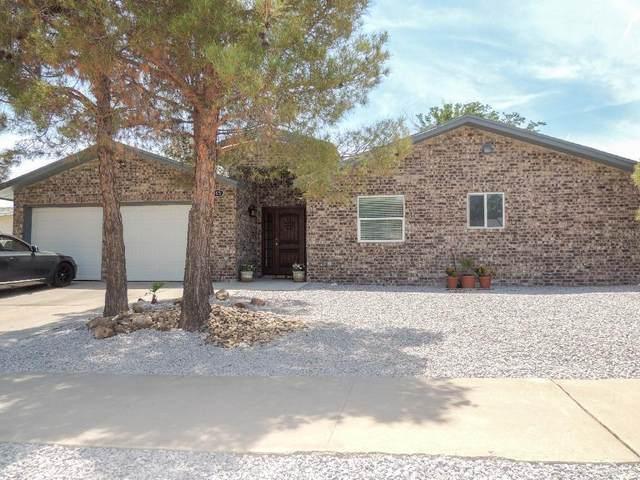 1665 Dick Ritter Drive, El Paso, TX 79936 (MLS #847210) :: The Matt Rice Group