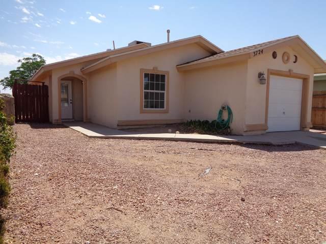 3724 Exodus Street, El Paso, TX 79936 (MLS #847218) :: Mario Ayala Real Estate Group