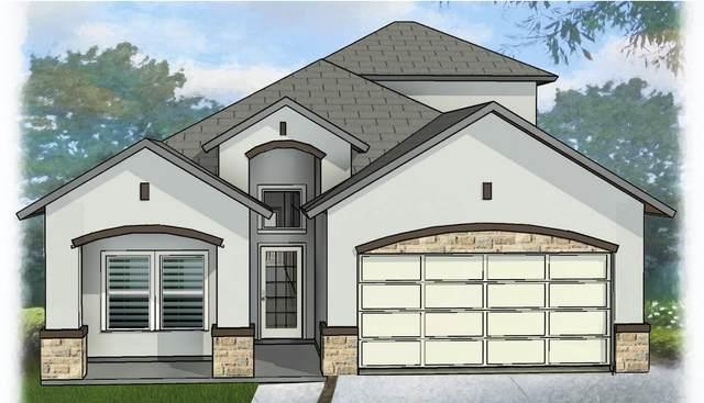 13629 Hazlewood Street, El Paso, TX 79928 (MLS #847298) :: The Purple House Real Estate Group