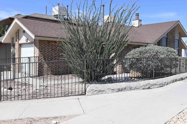 827 Derrickson Drive, El Paso, TX 79912 (MLS #847367) :: Jackie Stevens Real Estate Group