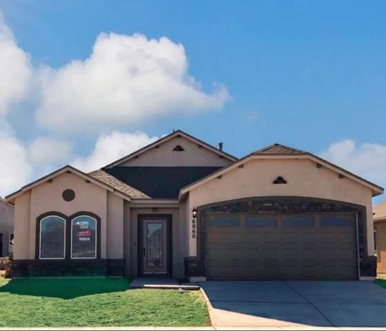 1001 Indigo Sky Street, El Paso, TX 79928 (MLS #847374) :: Red Yucca Group