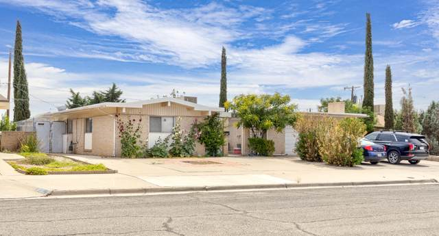 8112 Freedom Drive, El Paso, TX 79925 (MLS #847390) :: Red Yucca Group