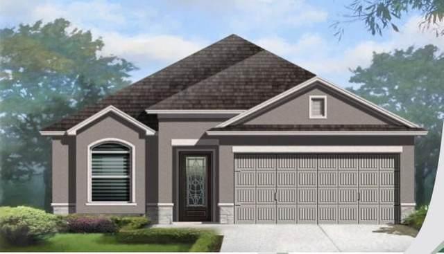 13841 Garforth Avenue, El Paso, TX 79928 (MLS #847404) :: Summus Realty