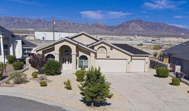 7370 Phil Hansen Drive, Canutillo, TX 79835 (MLS #847406) :: The Purple House Real Estate Group
