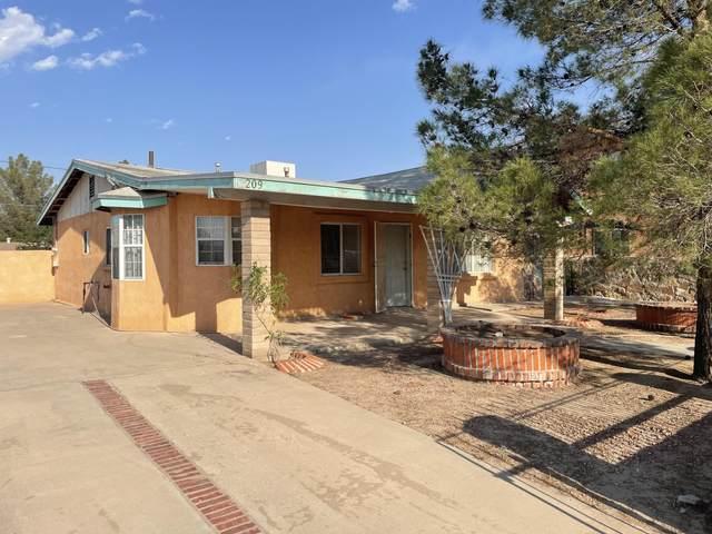 209 Palo Verde Drive, Sunland Park, NM 88063 (MLS #847486) :: The Purple House Real Estate Group