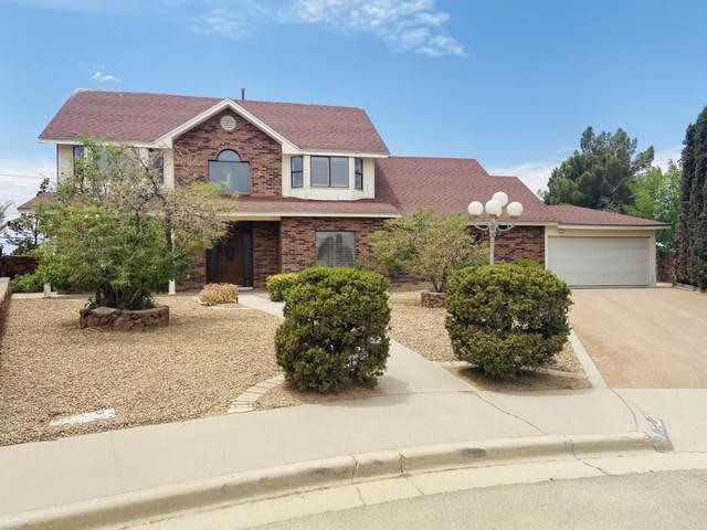 11505 Laura Marie Drive, El Paso, TX 79936 (MLS #847522) :: Preferred Closing Specialists