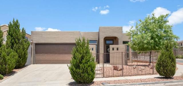 6301 Franklin Gate Drive, El Paso, TX 79912 (MLS #847645) :: Preferred Closing Specialists