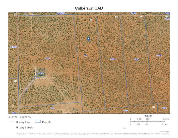 003 Culberson County, Van Horn, TX 79855 (MLS #847705) :: The Purple House Real Estate Group