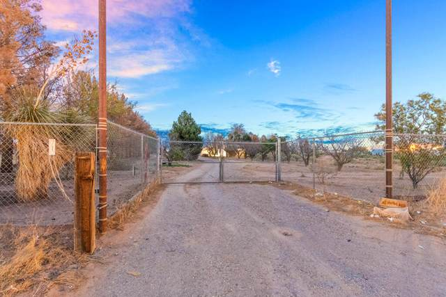 712 Hermosa Drive, Chaparral, NM 88081 (MLS #847736) :: Preferred Closing Specialists