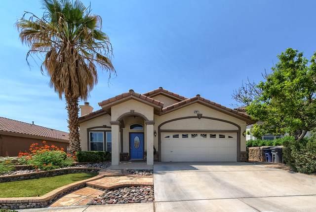 341 Resler Ridge Drive, El Paso, TX 79912 (MLS #847859) :: Preferred Closing Specialists
