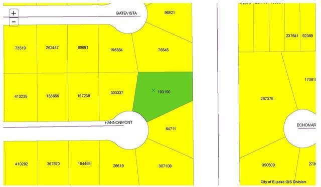 1 Hannonmont, Horizon City, TX 79928 (MLS #847892) :: Jackie Stevens Real Estate Group