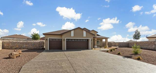 752 Gold Beach Drive, Canutillo, TX 79835 (MLS #847926) :: Red Yucca Group
