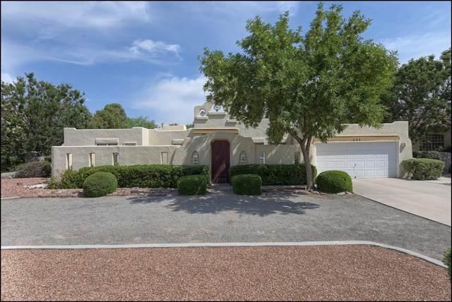 432 Rio Estancia Drive, El Paso, TX 79932 (MLS #847940) :: Mario Ayala Real Estate Group