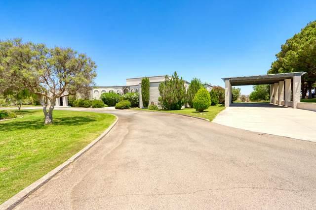 1 Trevington Place, Santa Teresa, NM 88008 (MLS #847974) :: The Purple House Real Estate Group