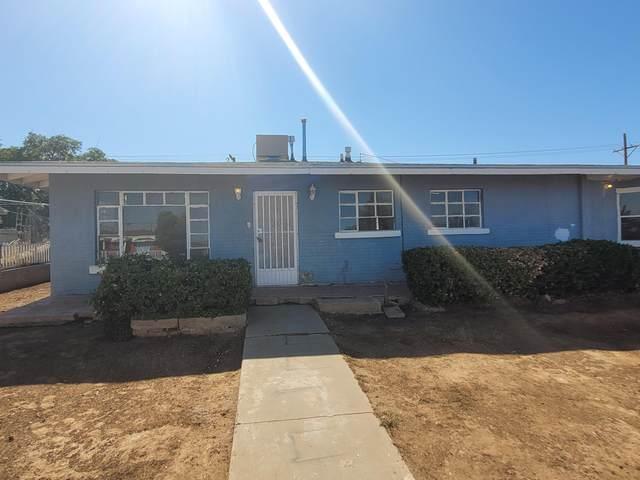9001 Mt Shasta Drive, El Paso, TX 79904 (MLS #848030) :: Red Yucca Group