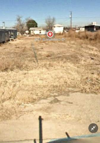 437 Bandolina Drive, Socorro, TX 79927 (MLS #848035) :: The Purple House Real Estate Group