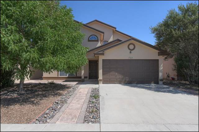 733 Linda Johnson Avenue, El Paso, TX 79932 (MLS #848039) :: Jackie Stevens Real Estate Group