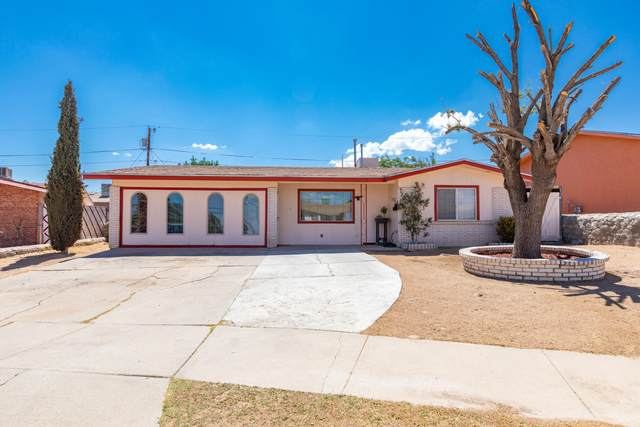 10510 Cuesta Brava Lane, El Paso, TX 79935 (MLS #848053) :: The Matt Rice Group