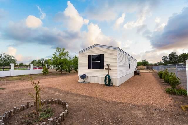 13645 Moscatel Drive, San Elizario, TX 79849 (MLS #848285) :: Red Yucca Group