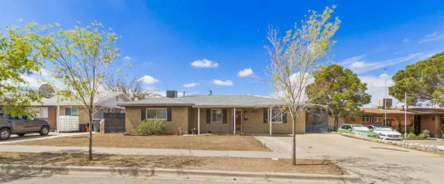 7920 Basswood Avenue, El Paso, TX 79925 (MLS #848420) :: Red Yucca Group