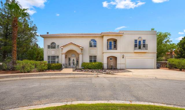 4536 Globe Willow Drive, El Paso, TX 79922 (MLS #848545) :: Red Yucca Group