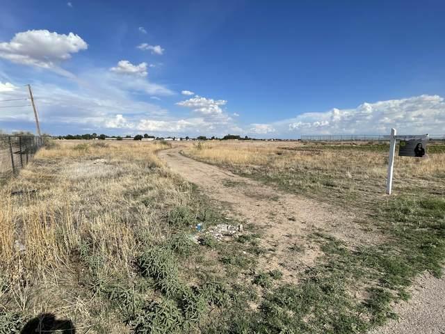 172 Tassie Way, Socorro, TX 79927 (MLS #848546) :: Red Yucca Group