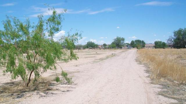 327 Inglewood, El Paso, TX 79927 (MLS #848561) :: Jackie Stevens Real Estate Group