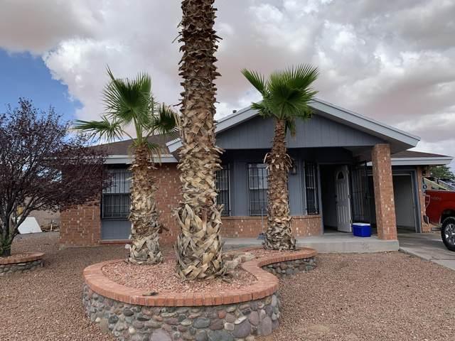 504 Velia Court Court, Horizon City, TX 79928 (MLS #848607) :: Red Yucca Group