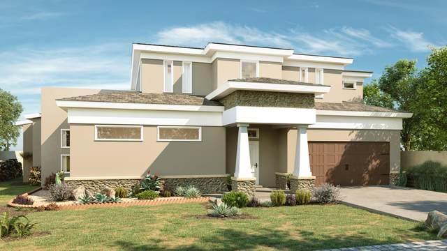 613 W La Entrada Circle, Sunland Park, NM 88063 (MLS #848619) :: The Purple House Real Estate Group