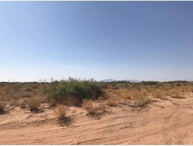 4 Horizon Boulevard, Horizon City, TX 79928 (MLS #848687) :: Red Yucca Group