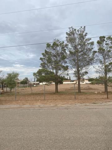 315 Geronimo Rd Road, Chaparral, NM 88081 (MLS #848729) :: Jackie Stevens Real Estate Group