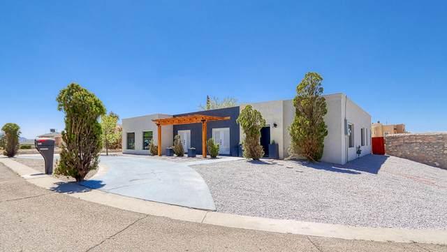 321 Barbaree Drive, El Paso, TX 79912 (MLS #848752) :: Preferred Closing Specialists