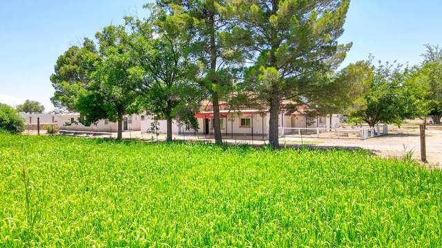 12100 Socorro Road, San Elizario, TX 79849 (MLS #848793) :: Jackie Stevens Real Estate Group