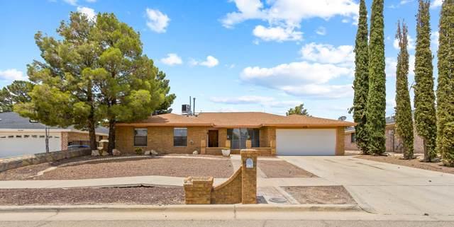 6733 El Parque Drive, El Paso, TX 79912 (MLS #848883) :: Red Yucca Group