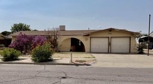 2905 Hector Drive, El Paso, TX 79935 (MLS #848904) :: Red Yucca Group