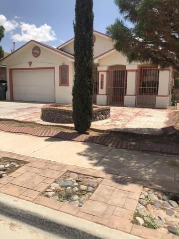 11668 Patrick James Court, El Paso, TX 79936 (MLS #848932) :: Red Yucca Group