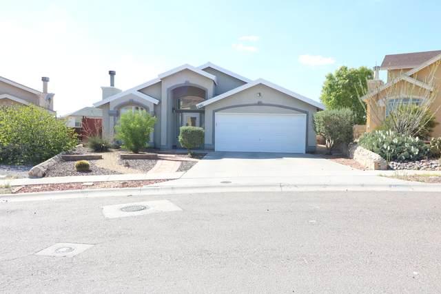 6061 Barrett Allen Lane, El Paso, TX 79932 (MLS #848935) :: The Matt Rice Group