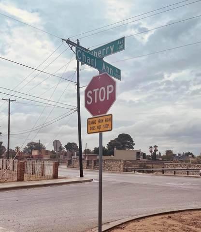 5377 Charl Ann Street, El Paso, TX 79932 (MLS #848947) :: Red Yucca Group