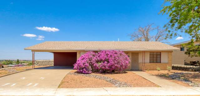 147 Clairemont Road, El Paso, TX 79912 (MLS #848958) :: Red Yucca Group