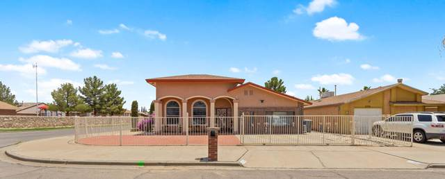 11380 Long John Drive, El Paso, TX 79936 (MLS #848980) :: The Purple House Real Estate Group