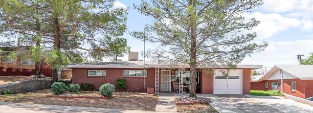 447 Castile Avenue, El Paso, TX 79912 (MLS #849041) :: Red Yucca Group