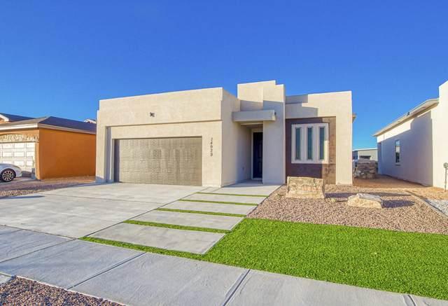 14845 John Mcneely, El Paso, TX 79938 (MLS #849067) :: Summus Realty