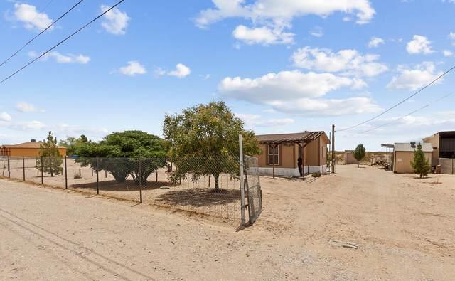 610 Little Apalooza Street, Tornillo, TX 79853 (MLS #849074) :: Mario Ayala Real Estate Group