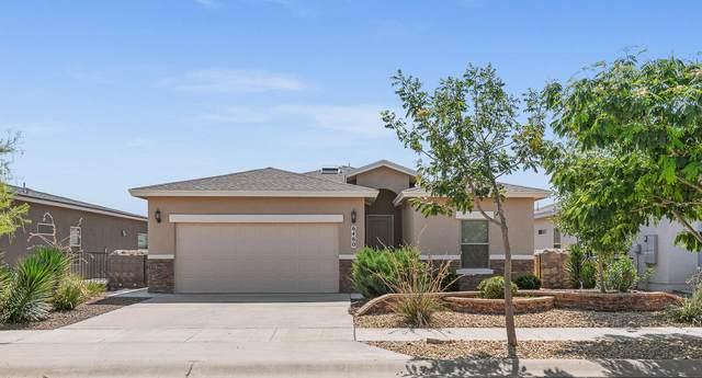 6460 Tama Street, El Paso, TX 79932 (MLS #849080) :: Red Yucca Group