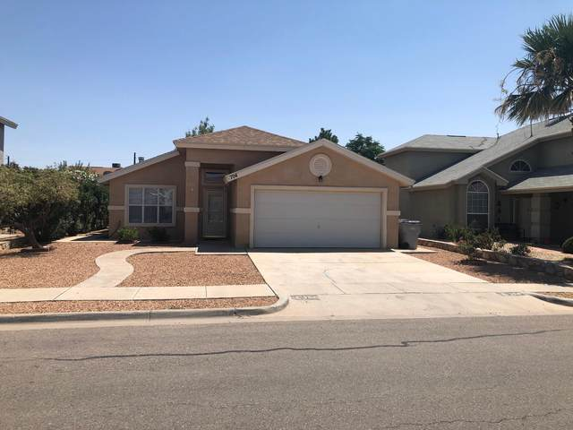 704 Milton Henry Avenue, El Paso, TX 79932 (MLS #849143) :: Red Yucca Group