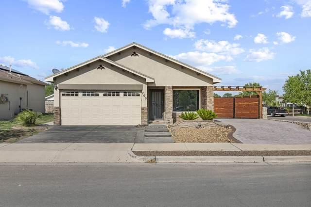 700 Lt Joe Magallanes Road, Socorro, TX 79927 (MLS #849208) :: Red Yucca Group