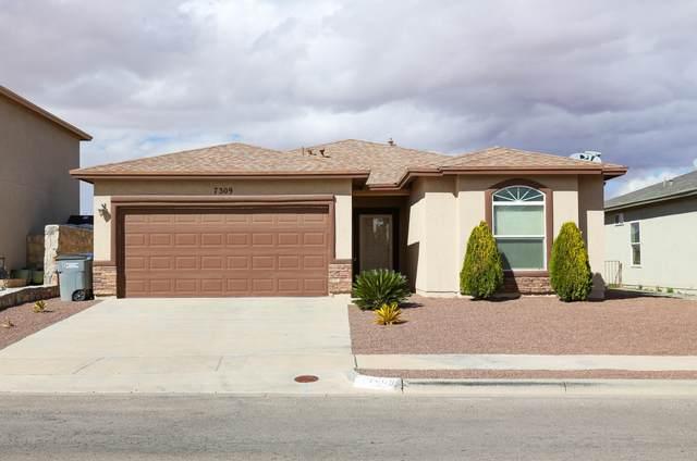 7309 Mesquite Flor Drive, El Paso, TX 79934 (MLS #849212) :: Summus Realty