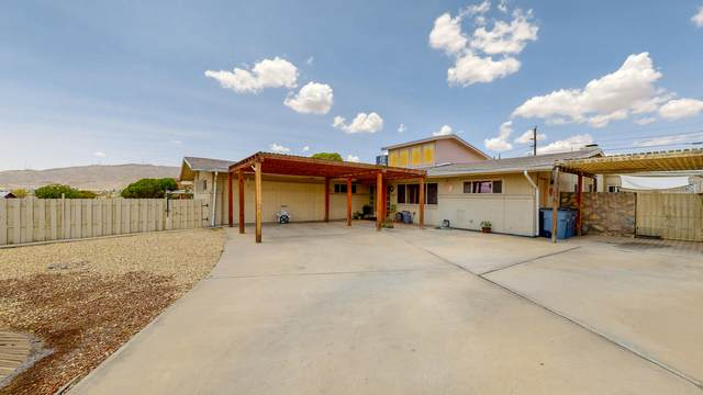 4531 Frankfort Avenue, El Paso, TX 79903 (MLS #849217) :: Red Yucca Group