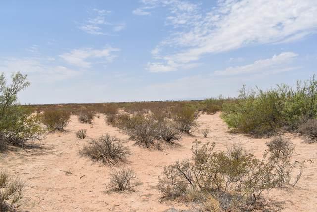 5300 Oshea Drive, El Paso, TX 79938 (MLS #849230) :: Jackie Stevens Real Estate Group