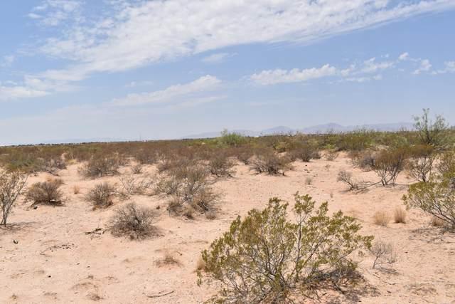 5201 Tamara Drive, El Paso, TX 79938 (MLS #849233) :: Jackie Stevens Real Estate Group